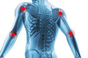 artroser-ulotka-producent-premium-zamiennik