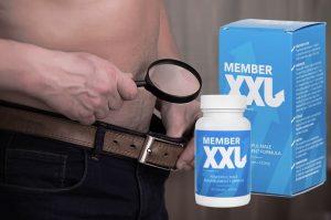 member-xxl-ulotka-producent-premium-zamiennik