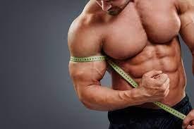 Muscle Gain - premium - ulotka - zamiennik - producent